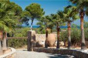 Very nice villa with 7 bedrooms near to Cala Tarida