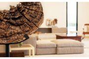 Moderne High-End Villa in Ibizas Traumlage