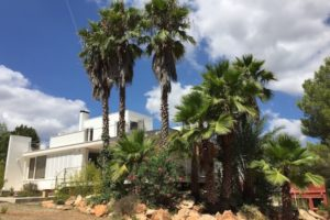 House 10 minute from Ibiza for sale in Puig d'en Valls