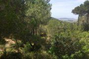 Luxury Villa between Ibiza and Santa Eulalia with amazing views (10)