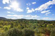 Finca for sale close to Santa Eularia and Ibiza (15)