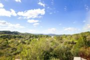 Finca for sale close to Santa Eularia and Ibiza (16)