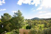 Finca for sale close to Santa Eularia and Ibiza (17)