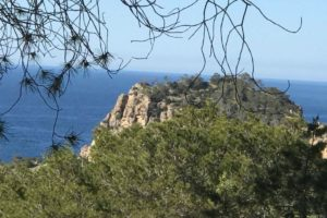 Plot for sale in Cala Salada with licence to build