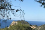 Plot for sale in Cala Salada with licence to build (5)