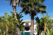 For sale a beautiful villa in Cala Jondal in Ibiza (33)