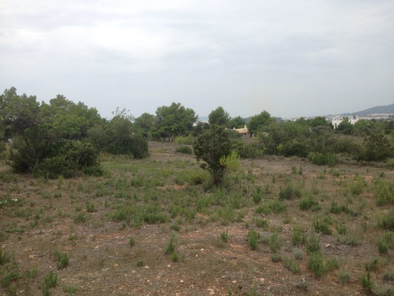 Very large plot with the possibility to build a villa with pool