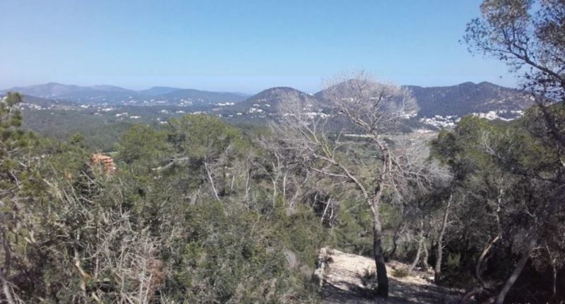 Nice urban land in Roca Lisa from 1,500 sqm land for sale