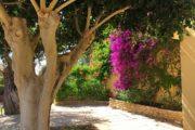 charming-6-bedrooms-villa-ner-to-san-antonio-and-san-rafael (7)