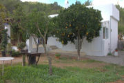 renovated-house-for-sale-in-san-lorenzo (13)