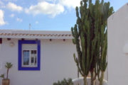 renovated-house-for-sale-in-san-lorenzo (17)