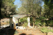 unique-opportunity-to-acquire-a-traditional-ibizan-house (10)