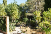 unique-opportunity-to-acquire-a-traditional-ibizan-house (9)