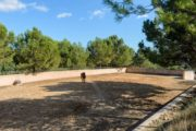 new-build-villa-in-santa-gertrudis-with-large-land-in-the-middle-of-nature (12)