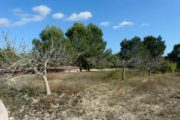 new-build-villa-in-santa-gertrudis-with-large-land-in-the-middle-of-nature (8)